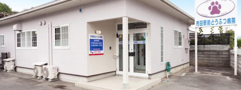市田駅前どうぶつ病院 外観