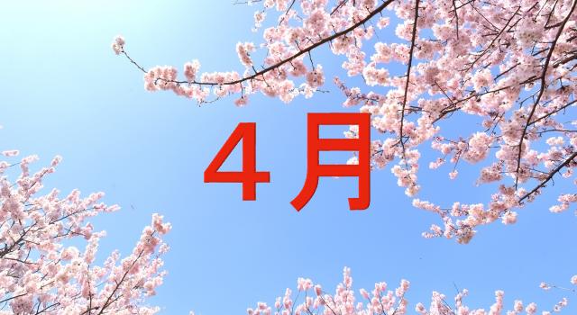 桜 空 4月